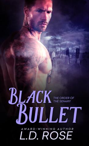 Black Bullet book 2