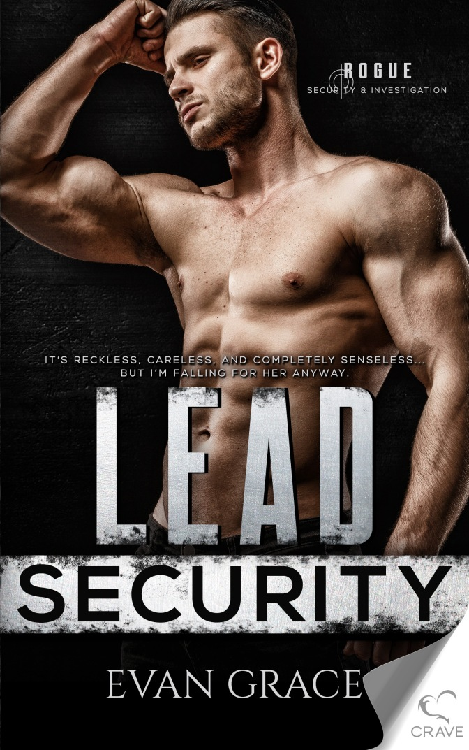 *Blogtober day 2*Lead Security